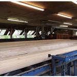 pre-cut log 3